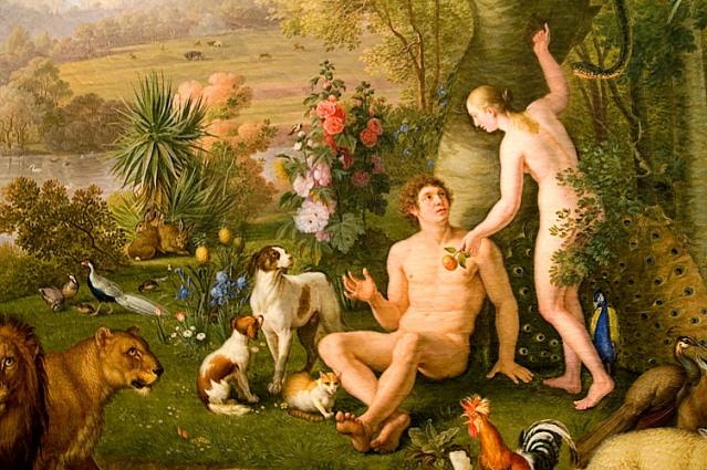 Миф о митохондриальной Еве Мифы об эволюции человека